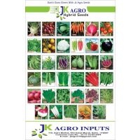 KITCHEN GARDEN PACKETS OF VEGETABLE SEEDS (PACK OF 10)