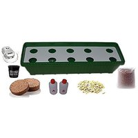 GZ Green Hydroponic 10 Plants Growing Planter Kit With Air Pump ,Green Color ( Easy To Grow )