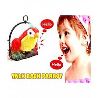 Talking Parrot KK Talk Back Parrot Kids Toy