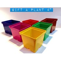 "GIFT A PLANT POT SET OF 8 PCS SIZE 4"" MULTY COLORS"