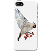 Dailyobjects Waxwing Feeding Case For Iphone 5/5S White/Cream