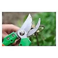Pruning Shear Scissor Garden Tool For Pruner FruitCutter Tree Branch FlowerClipp