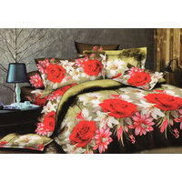 Shopping Edge Double Bedsheet With 2 Pillow Cover Bs047