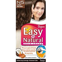Bigen Easy 'n Natural Hair Color - N1 Natural Black/Brown Colour