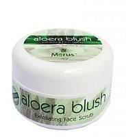 Aloera Blush- Exfoliating Face Scrub (with Organic Aloe Vera & Rice)